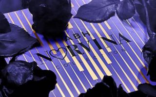 ANASTASIA BEVERLY HILLS NEW NORVINA PALETTE FOR 2019 3 320x200 - ANASTASIA BEVERLY HILLS NEW NORVINA PALETTE FOR 2019